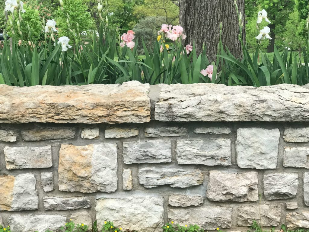 Stone wall in front of flowers - Wall of Depression
